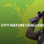 April 30 – May 3, 2021 | Natural History Museum City Nature Challenge