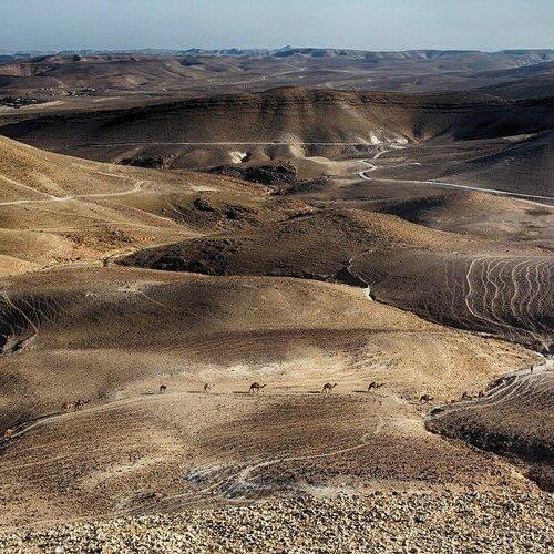 Israel, Egypt & the Desert - Tehila Gimpel