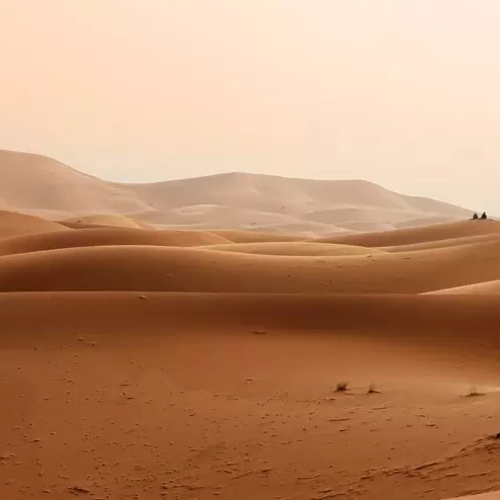 Why Did So Many Israelites Have to Die in the Desert?