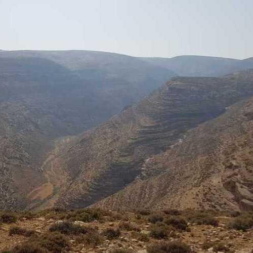 Reclaiming, Restoring & Reviving The Judean Desert
