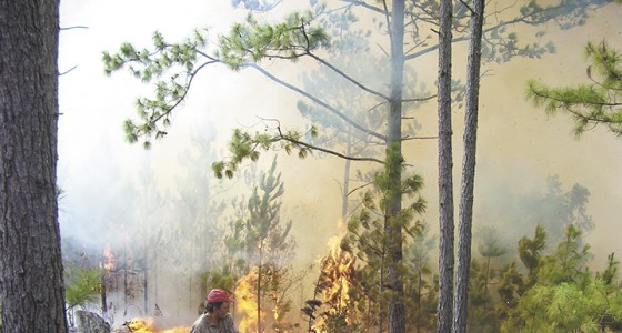 Volcán Masaya, incendios forestales