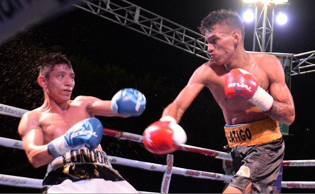 Cristofer Rosales está situado en el puesto número tres de la Federación Internacional de Boxeo (FIB). LA PRENSA/ROBERTO FONSECA
