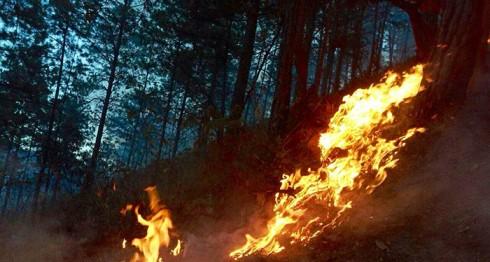 Incendio forestal en Dipilto. LA PRENSA/A. Lorío