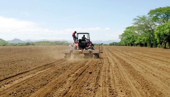 Algunos productores han optado por preparar la tierra para esperar a que el invierno se instale y comenzar la siembra. LA PRENSA/ARCHIVO