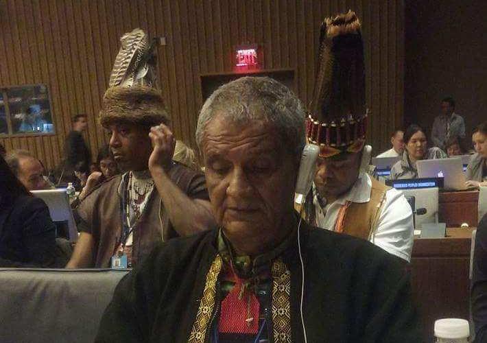 ONU, Pueblos indígenas