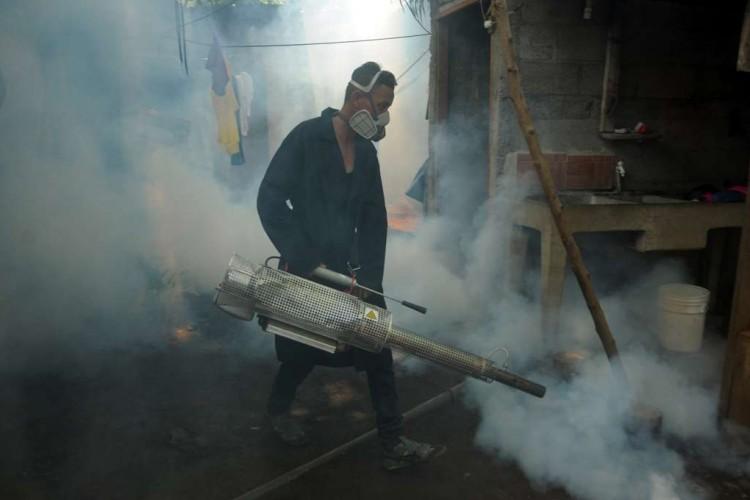 Las medidas para fumigación, abatización y destrucción de criaderos de zancudos también son básicas para prevenir la fiebre amarilla, al igual que el dengue, el zika y el chikungunya.