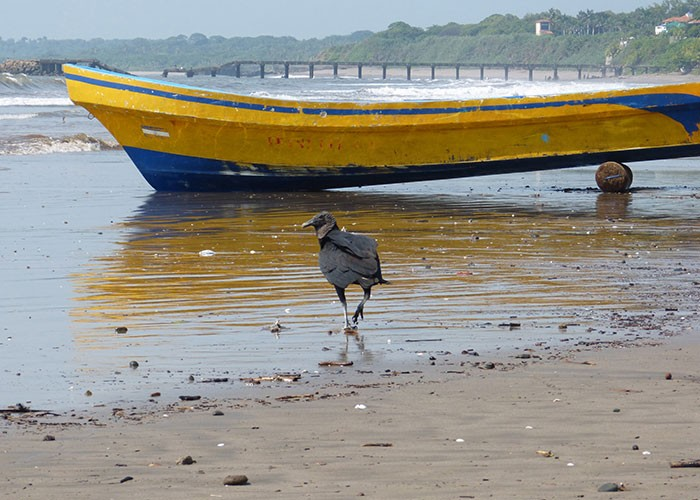 Masachapa, en el Pacífico de Nicaragua. LA PRENSA.