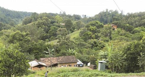 Cerro El Coyol, Ciudad Antigua