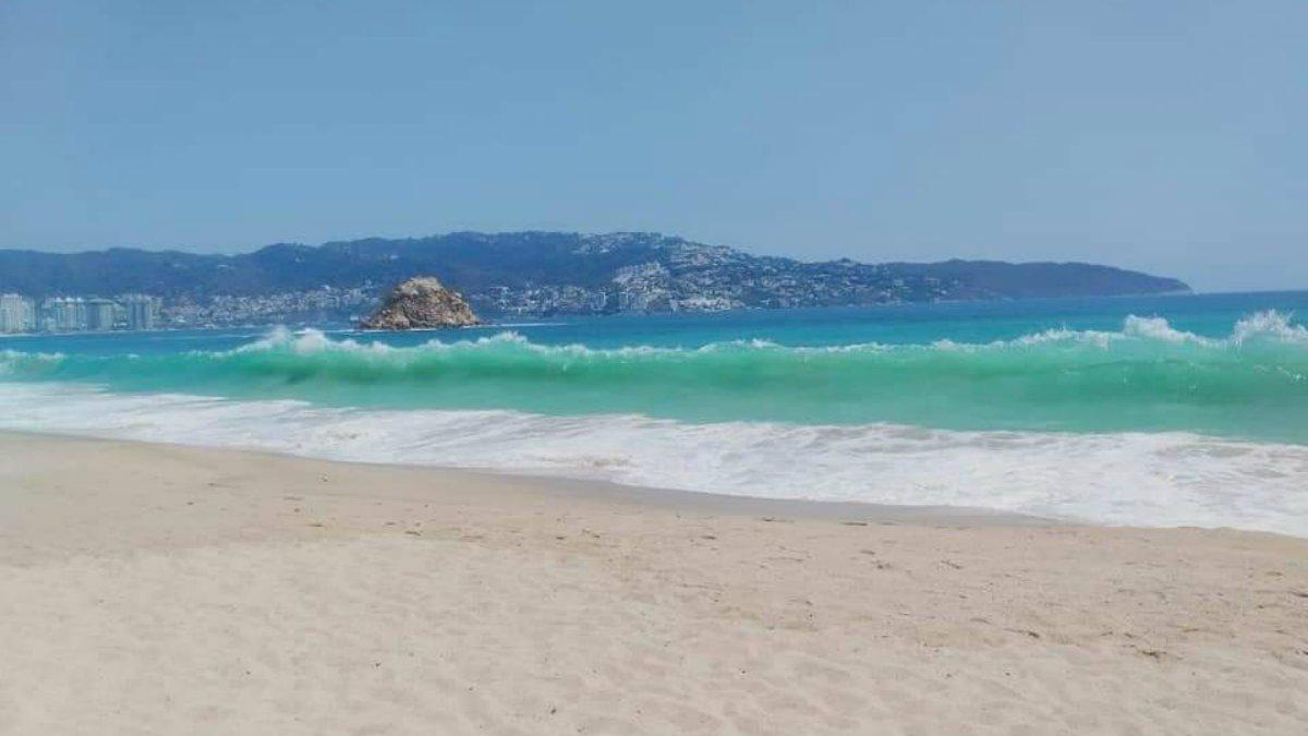 Acapulcosinturistas.jpg