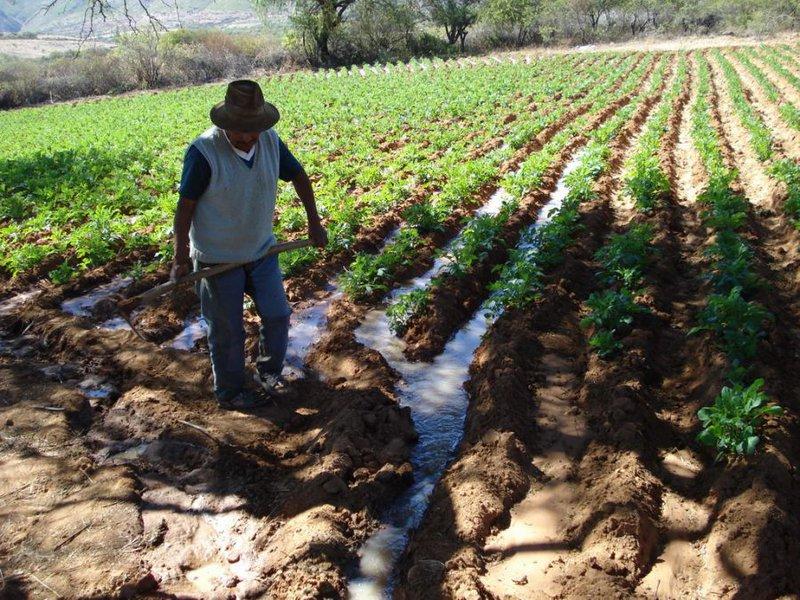 Foto-riego-campesino-meta-de-gobierno-de-un-millón-de-hectáreas120215.jpg