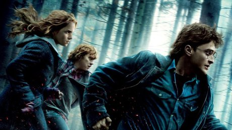 Harry Potter tiendaNY.jpg