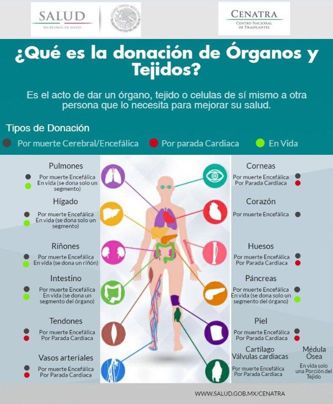 Infografia_donacion__7_.jpg