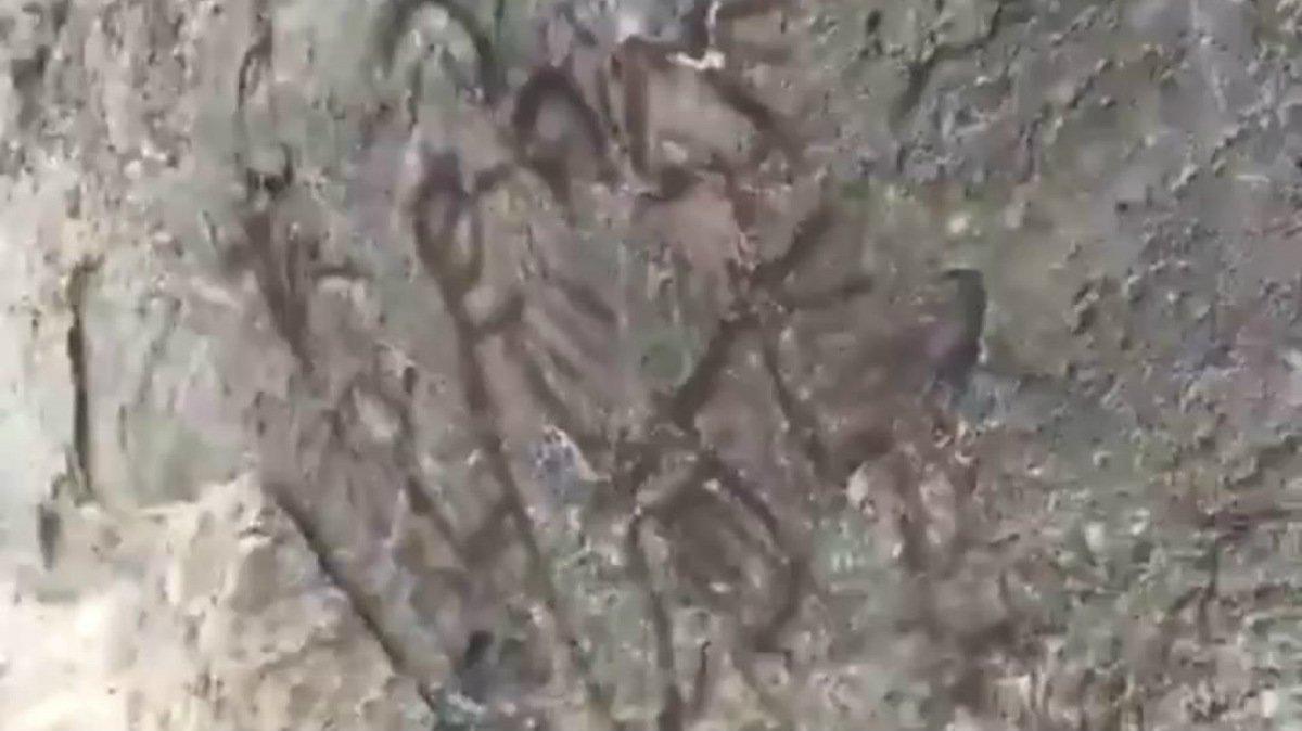 Descubren pinturas rupestres en Oaxaca tras sismo de magnitud 7.4