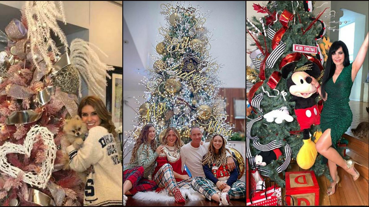 árbol de navidad famosas.jpg