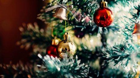 árbol de navidad mitad.jpg