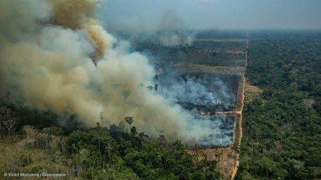 bomberos amazonas.jpg