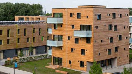 edificio madera.jpg