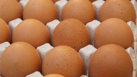 huevo mexico.jpg
