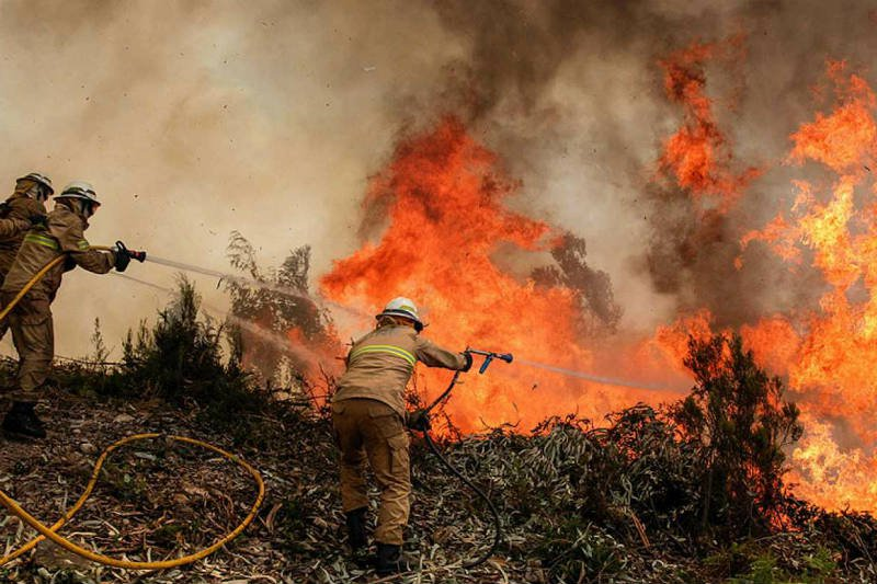 incendios-forestales-frecuentes-Estados-Unidos.jpg