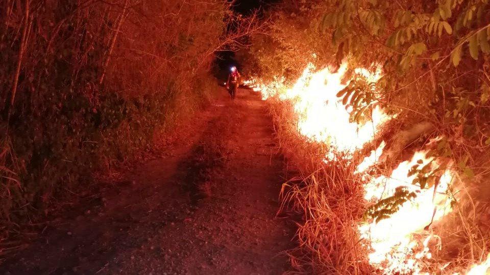 incendiosforestales1.jpg