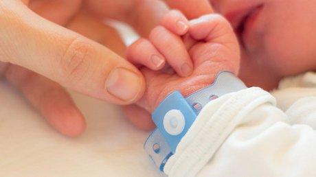 nacimientos (1).jpg