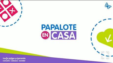 papalotencasa.jpg