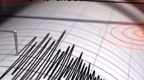 sismo nueva zelanda.jpg