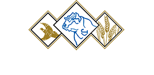 Jorgensen Land and Cattle Partnership Logo