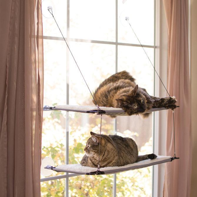 Window Lounger-PCE1.2.jpg
