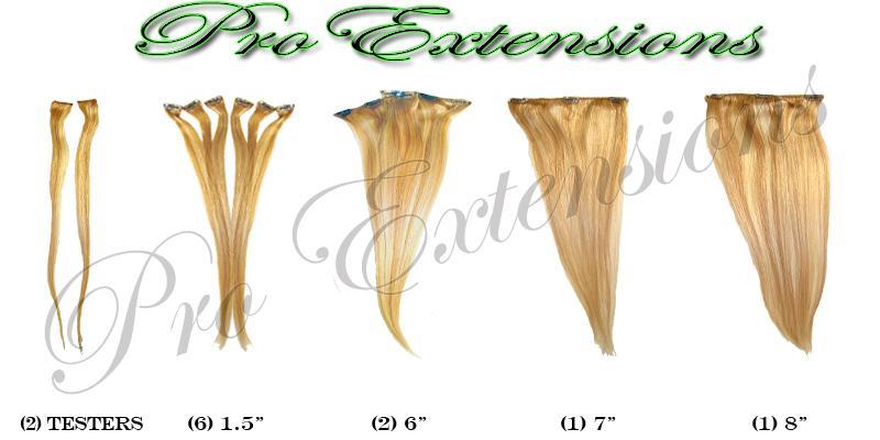 14 Inch Clip In Human Hair, Golden Blonde w Platinum Highlights-3b Golden Blonde with Platinum Highlights - 14 inch.jpg