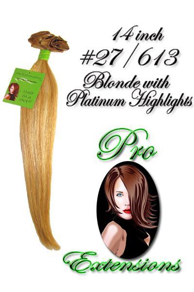 14 Inch Clip In Human Hair, Golden Blonde w Platinum Highlights-3c Golden Blonde with Platinum Highlights - 14 inch.jpg