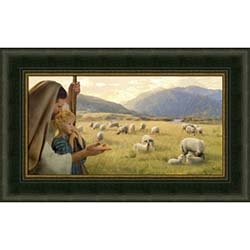 Feed My Sheep - Framed