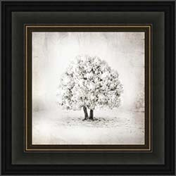 Tree of Life - Framed