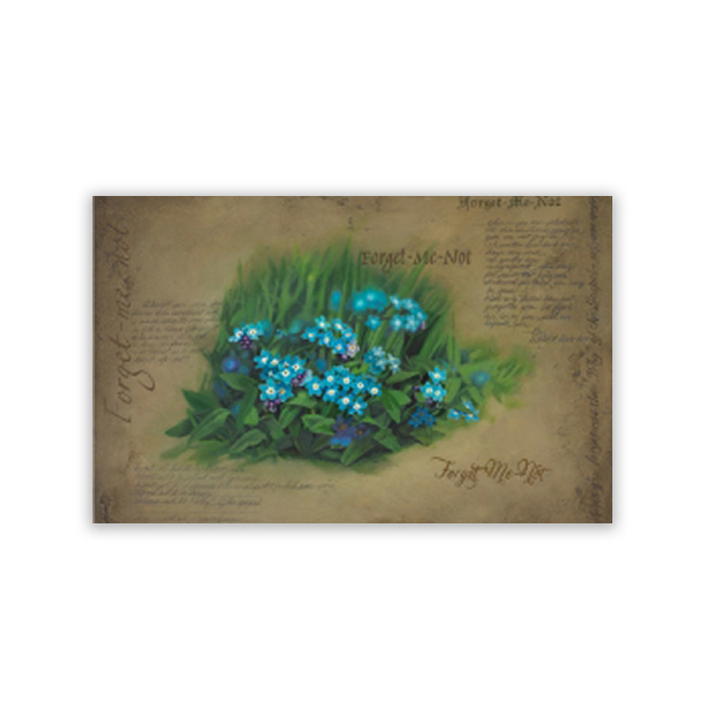 Forget Me Not Recommend Holder - CH-RH234