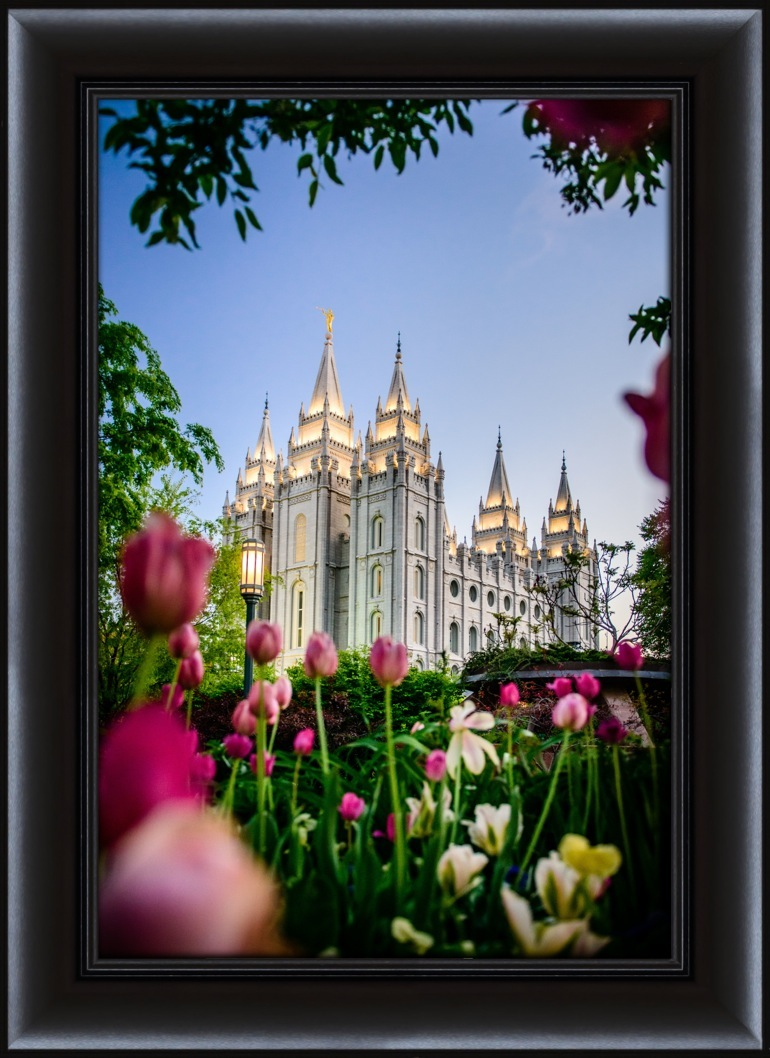 Salt Lake City Temple Tulips Framed In Temple