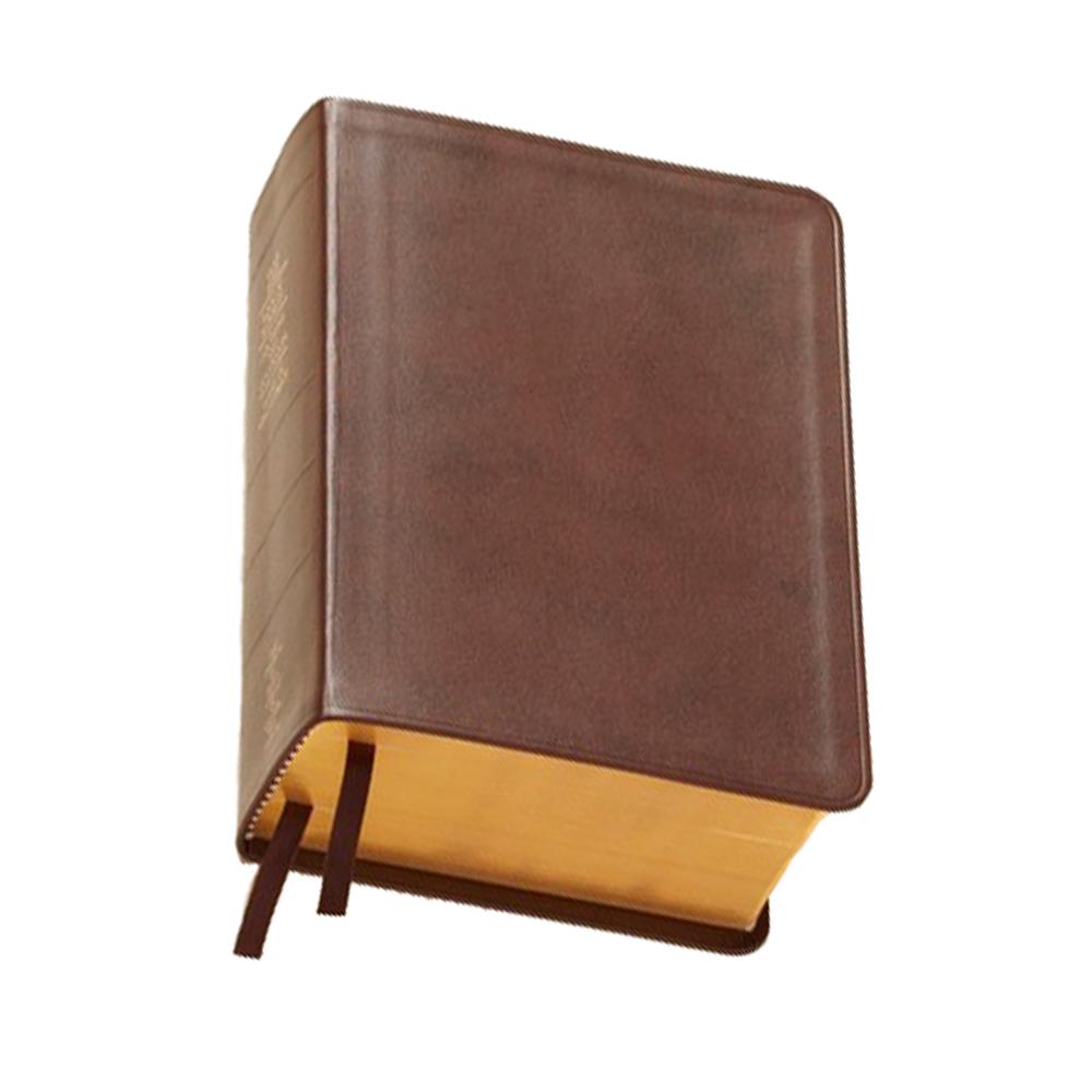 Regular Quad - Genuine Leather - LDS-QUADREG-GEN-2013