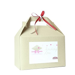 Valentines Day Gift Box provo mtc delivery, lds missionary gifts, lds missionary valentines day