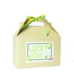 St. Patricks Day Gift Box provo mtc delivery, lds missionary gifts, lds missionary st. patricks day