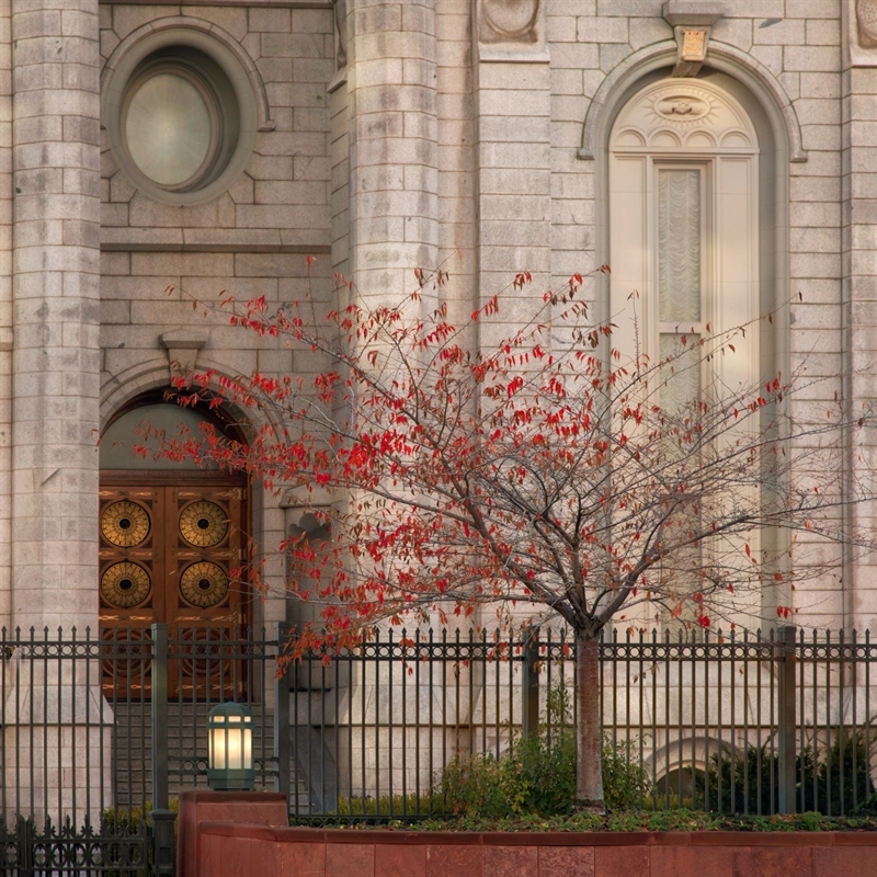 Salt Lake Temple - Sacred Doors Fall
