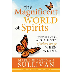 The Magnificent World of Spirits after-death experiences