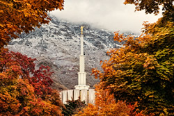 Provo Temple - Fall Window