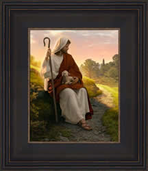 In The Shepherds Care - Framed