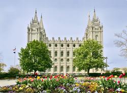 Salt Lake Temple - Tulips
