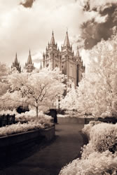 Salt Lake Temple - Infared Pathway