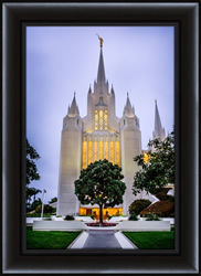 San Diego Temple with Tree - Framed