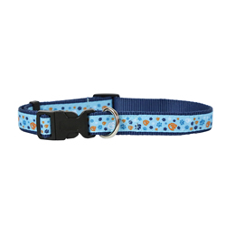 Blue CTR Pet Collar