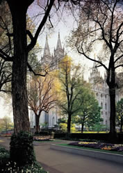 Salt Lake Utah Temple in the Summer - Print
