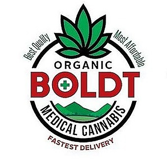 BOLDT - Delivery