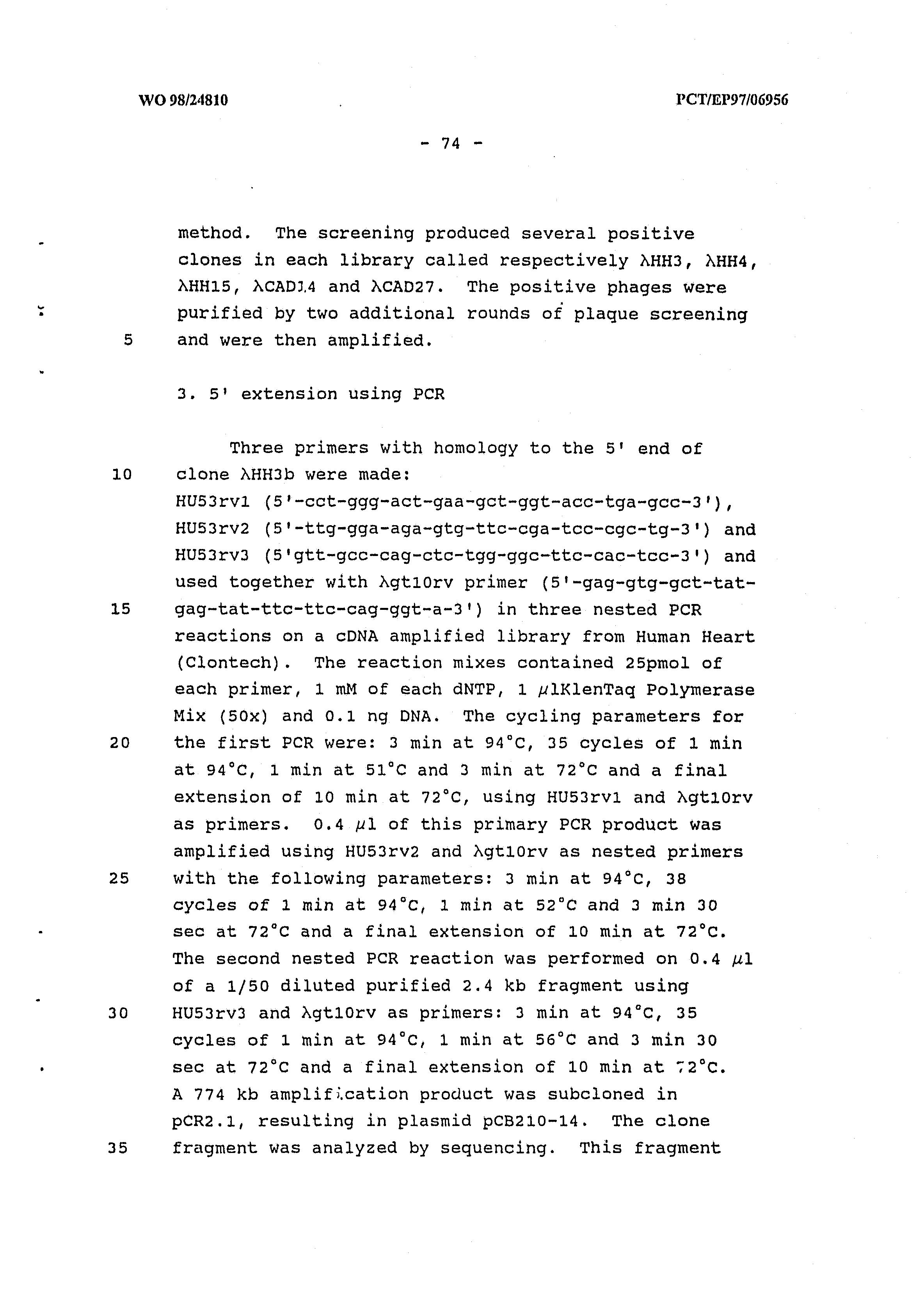 AU 1998/056622 A - Vertebrate Homologues Of Unc-53 Protein