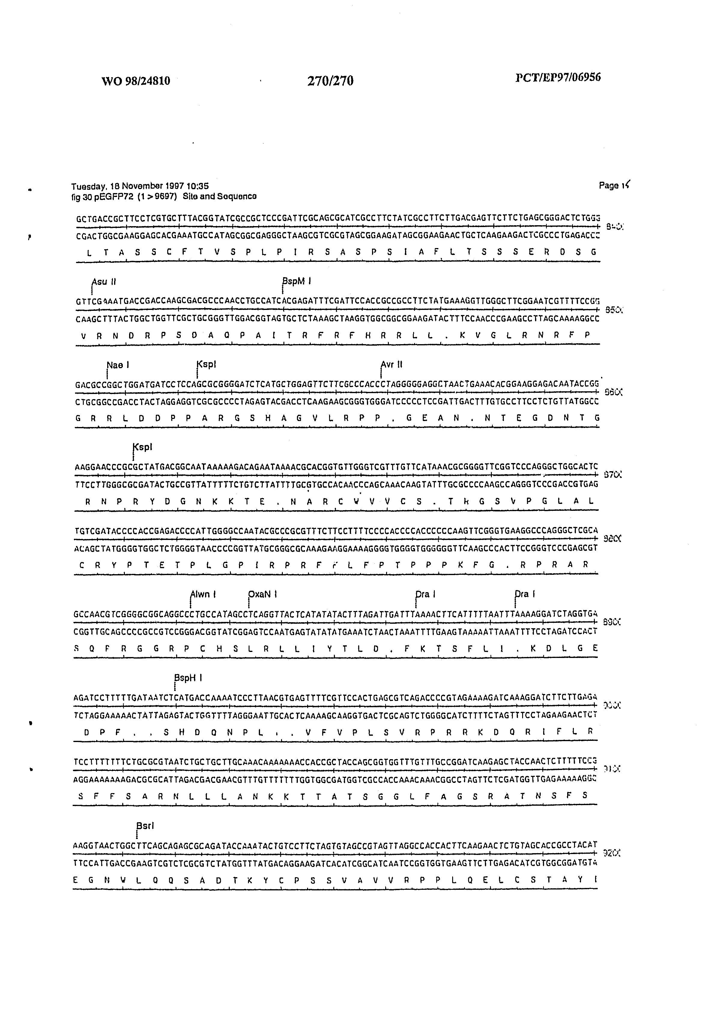 AU 1998/056622 A - Vertebrate Homologues Of Unc-53 Protein Of C